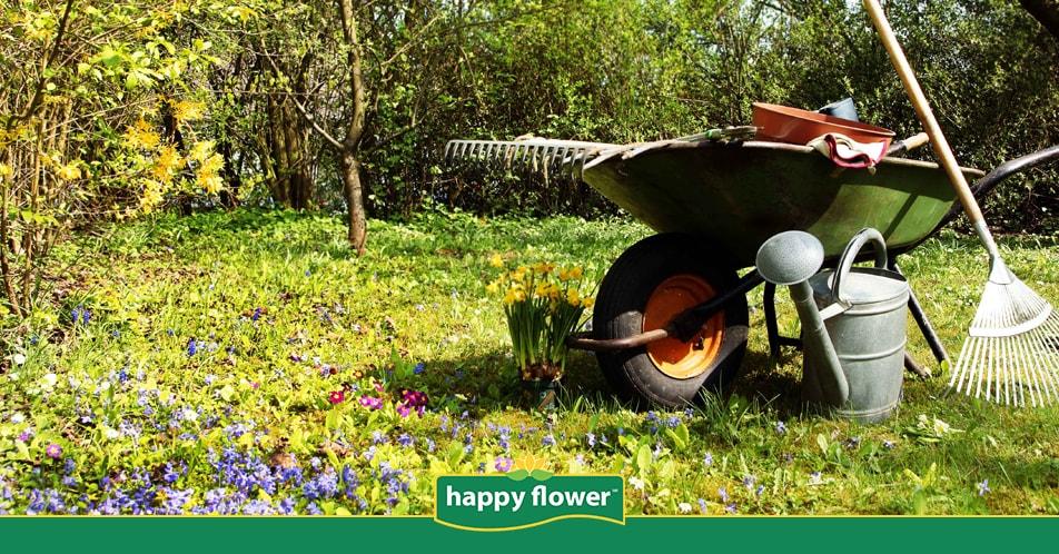 C mo salvar mi c sped despu s de que termine el invierno for Como cuidar el pasto de mi jardin